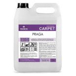 PRAGA безводная сухая пена с эффектом предотвращения повторного загрязнения премиум класса